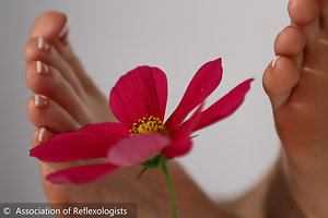 Reflexology. foot with flower